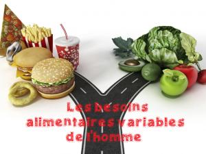 Sciences CM1 CM2 : les besoins alimentaires